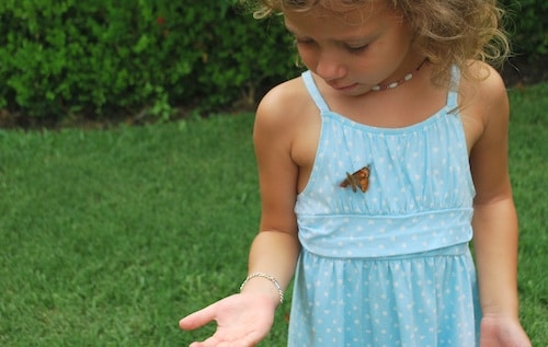 Saying Goodbye to Butterflies- Kid World Citizen