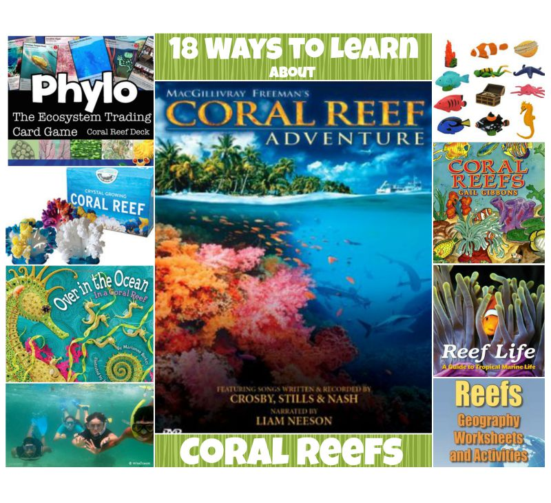 Coral Reefs: 18 Lessons, Books, Videos, Games & More To
